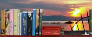 Bücher von DeLiA's vor Sonnenuntergang
